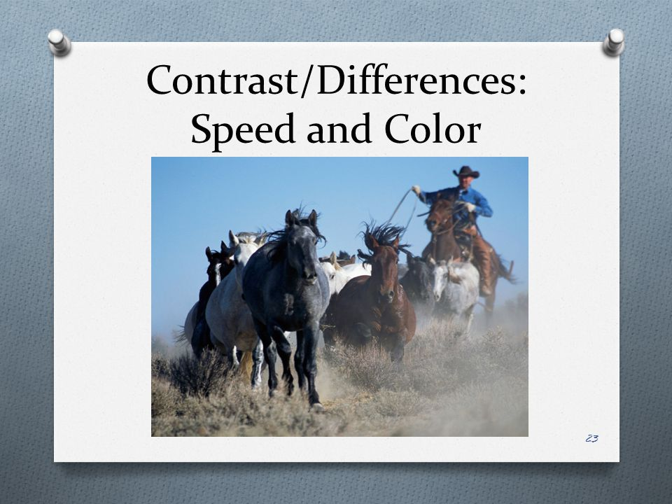 Contrast/Differences: Speed and Color
