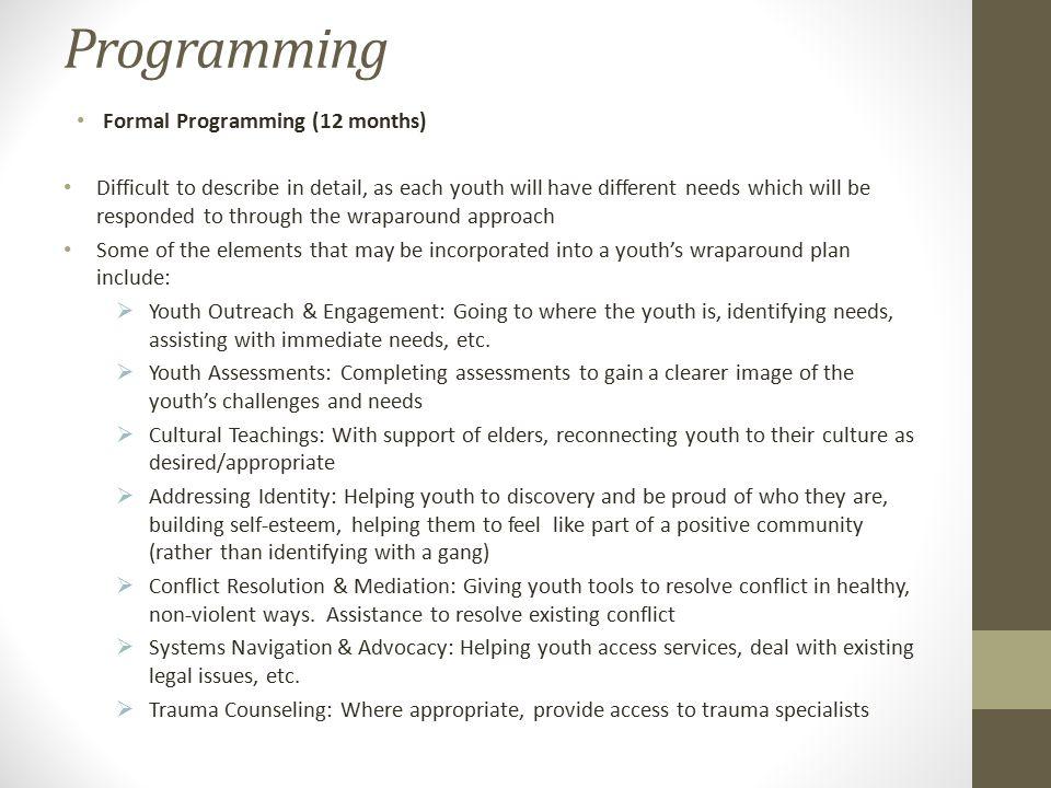 Programming Formal Programming (12 months)