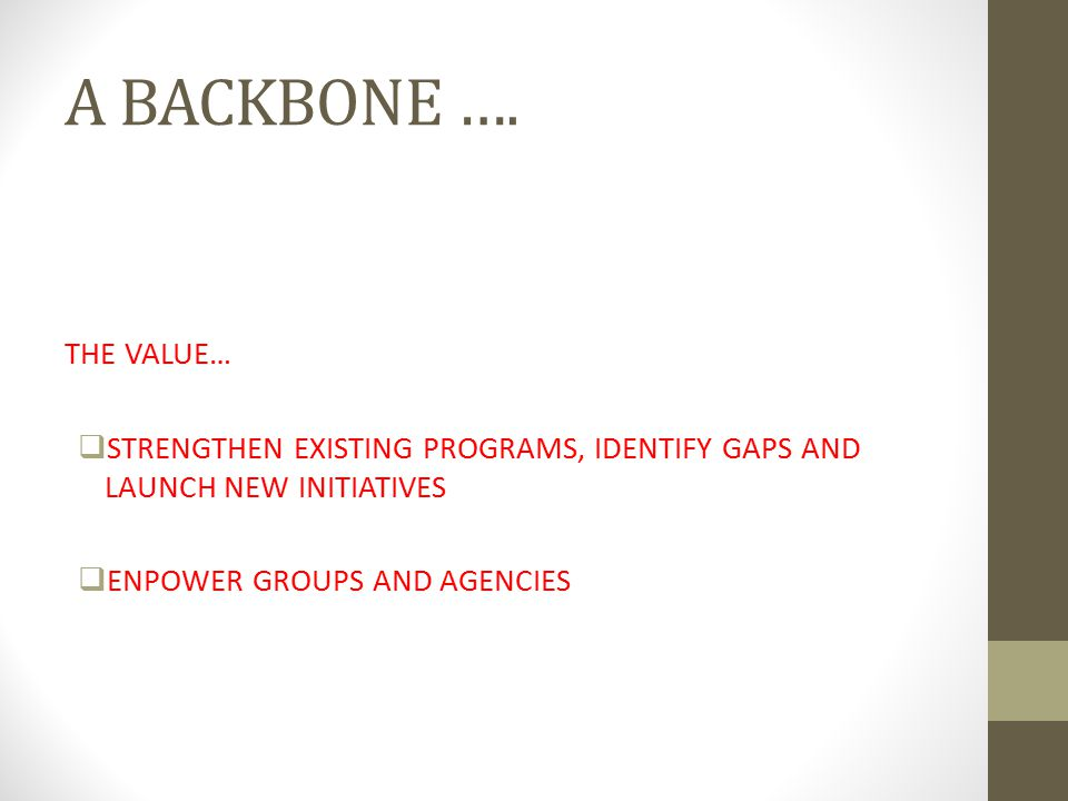 A BACKBONE …. THE VALUE… STRENGTHEN EXISTING PROGRAMS, IDENTIFY GAPS AND LAUNCH NEW INITIATIVES.