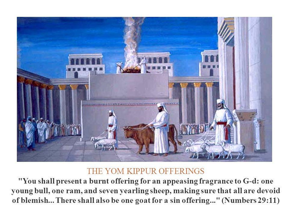 THE YOM KIPPUR OFFERINGS