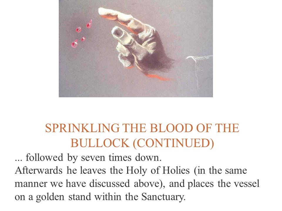 SPRINKLING THE BLOOD OF THE BULLOCK (CONTINUED)