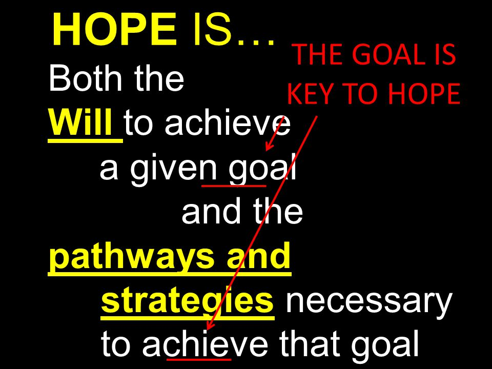 HOPE IS… Both the Will to achieve a given goal and the
