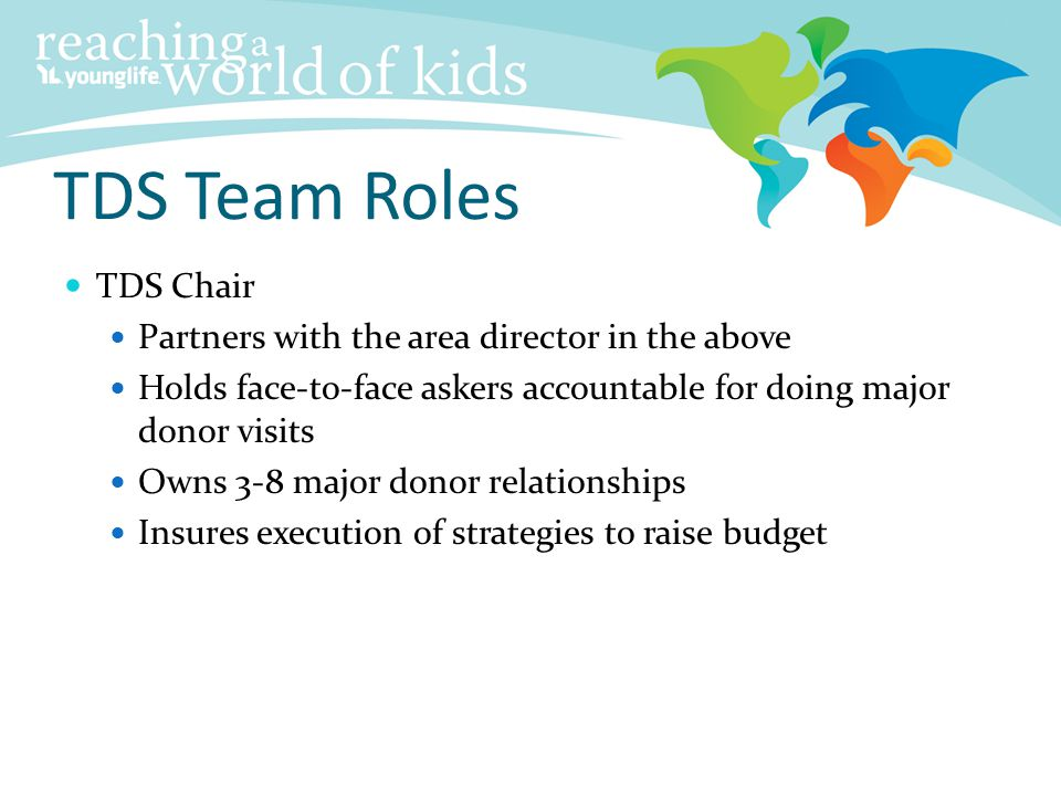 TDS Team Roles TDS Chair Partners with the area director in the above