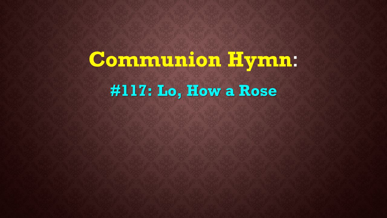 Communion Hymn: #117: Lo, How a Rose