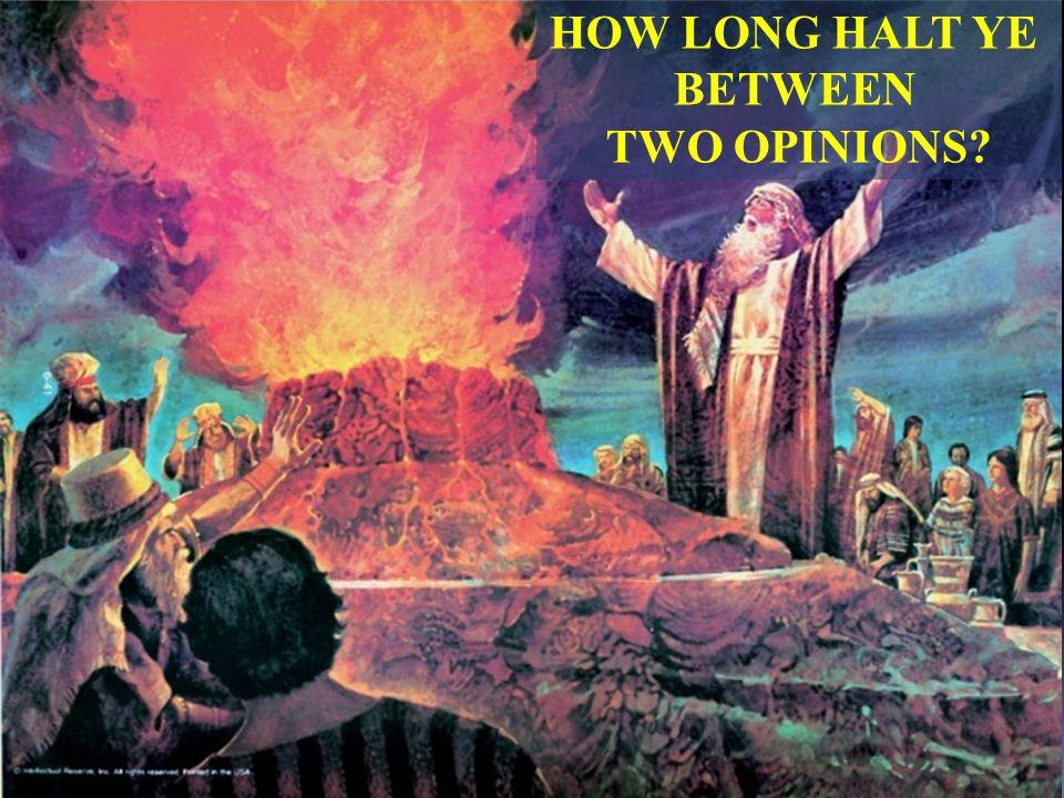 HOW LONG HALT YE BETWEEN TWO OPINIONS