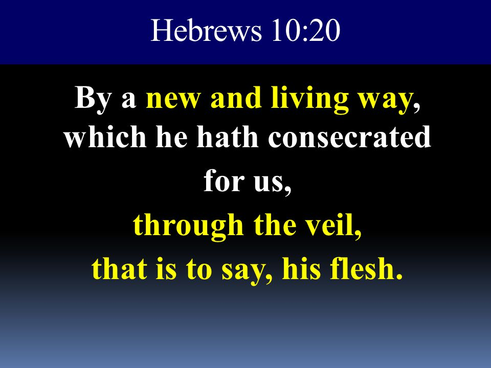 Hebrews 10:20 By a new and living way, which he hath consecrated for us, through the veil, that is to say, his flesh.