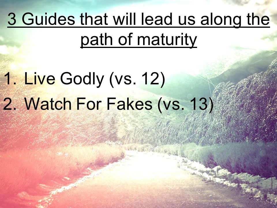 3 Guides that will lead us along the path of maturity