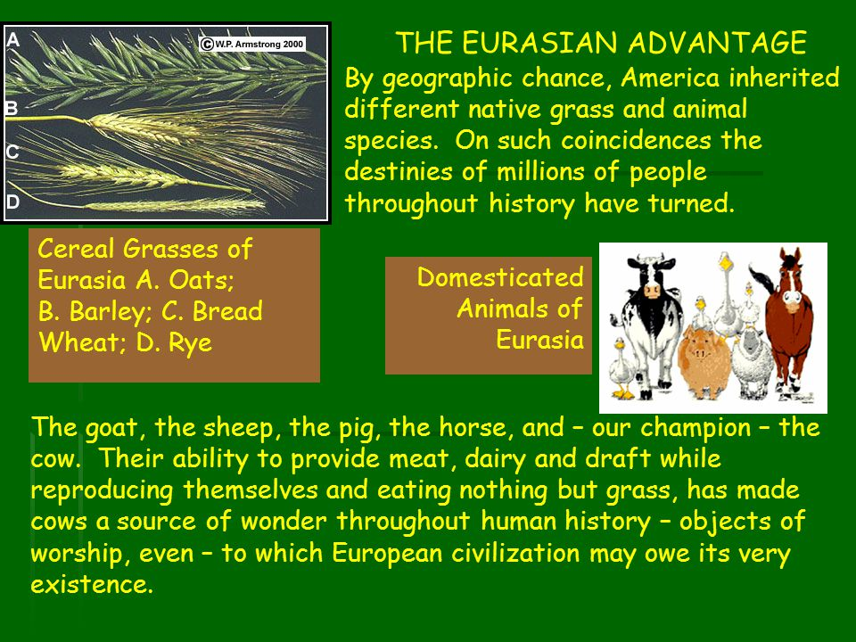 THE EURASIAN ADVANTAGE