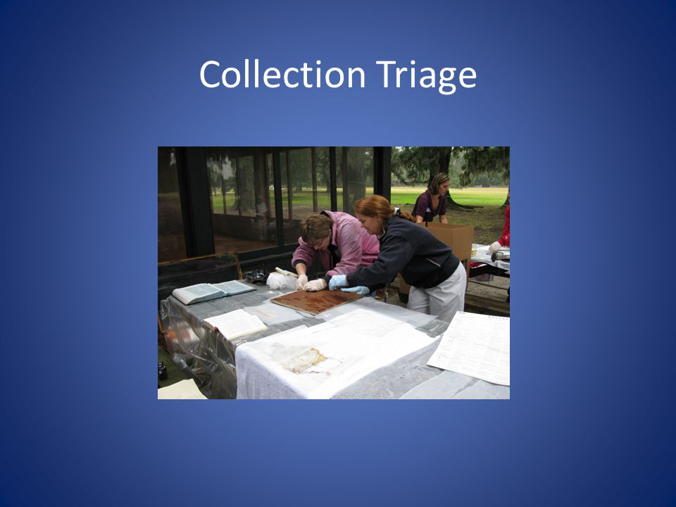Collection Triage