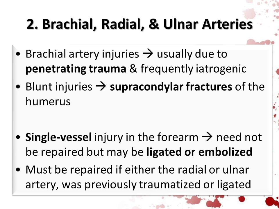 2. Brachial, Radial, & Ulnar Arteries