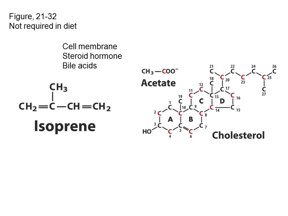 Figure, 21-32 Not required in diet Cell membrane Steroid hormone Bile acids