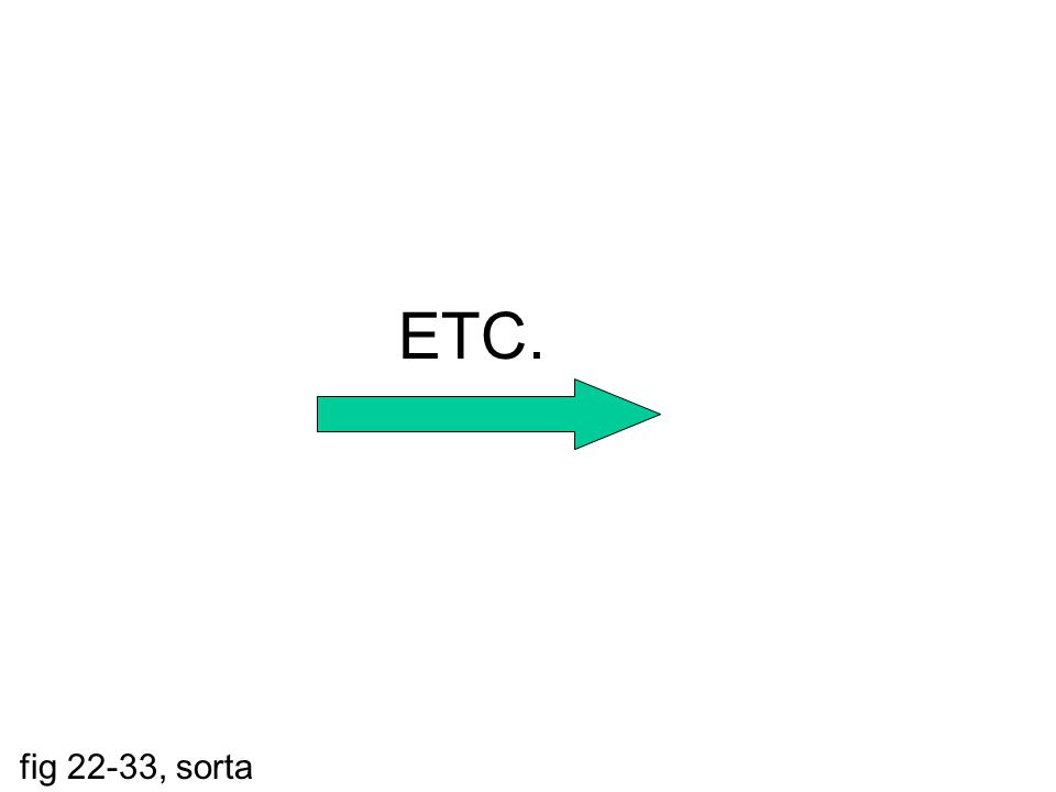 ETC. fig 22-33, sorta