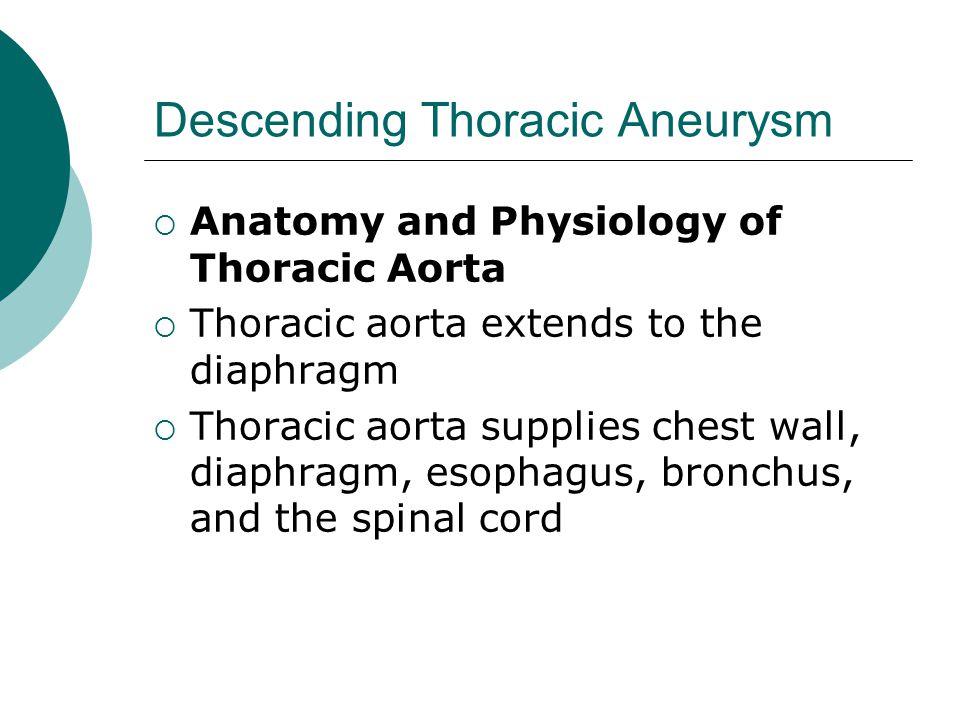 Descending Thoracic Aneurysm