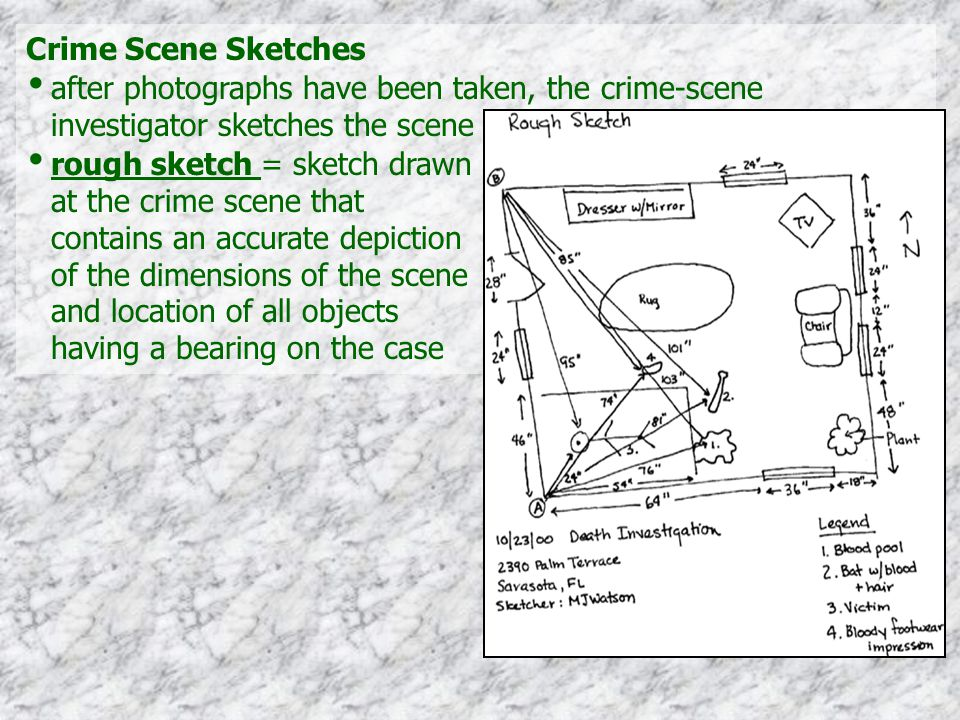 Crime Scene Sketches after photographs have been taken, the crime-scene investigator sketches the scene.
