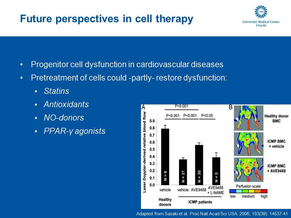 Future perspectives in cell therapy
