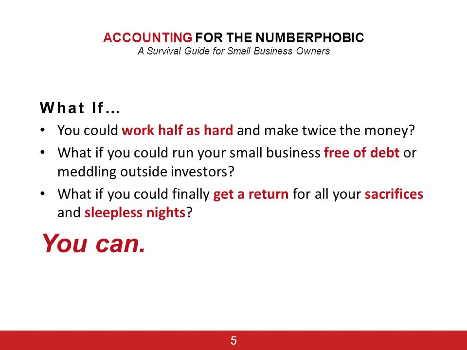 ACCOUNTING FOR THE NUMBERPHOBIC A Survival Guide for Small Business Owners