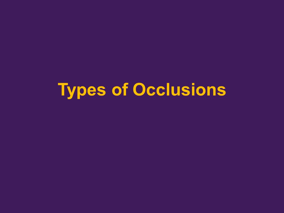 Types of Occlusions