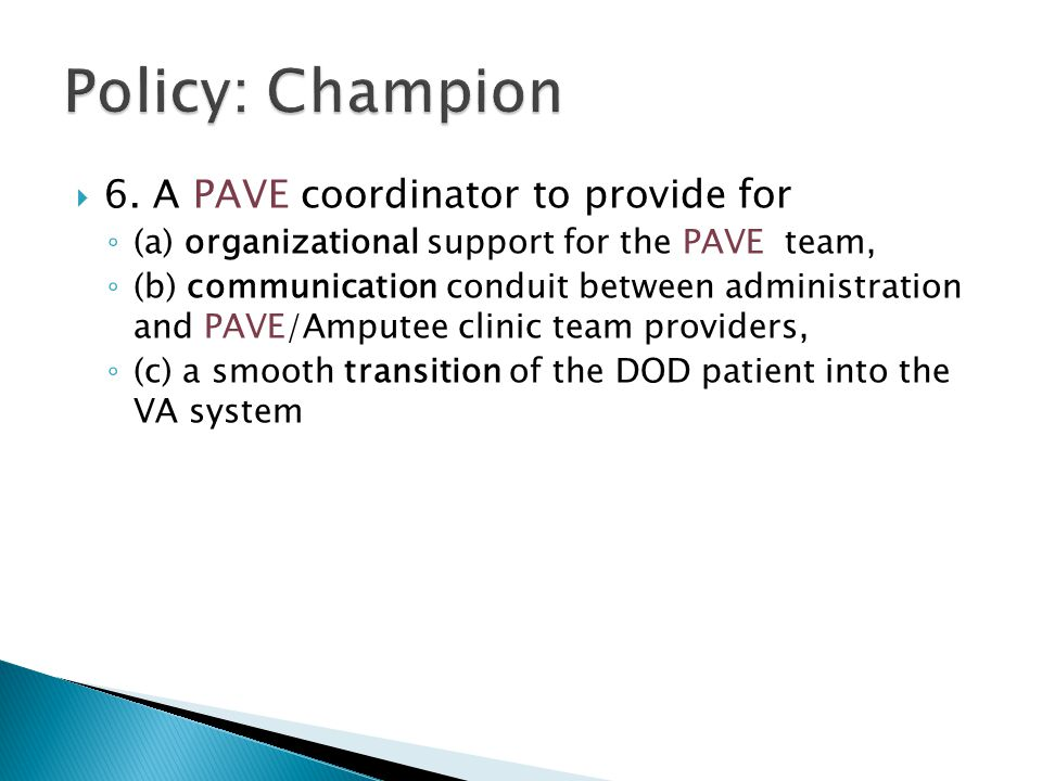 Policy: Champion 6. A PAVE coordinator to provide for