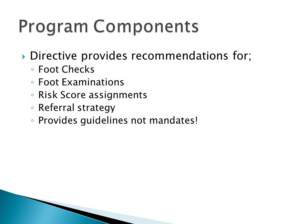 Program Components Directive provides recommendations for; Foot Checks