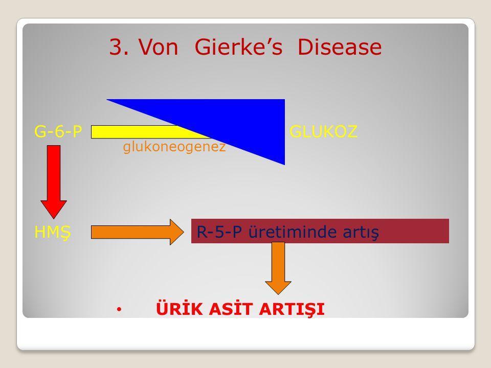 3. Von Gierke's Disease G-6-Paz G-6-P GLUKOZ HMŞ