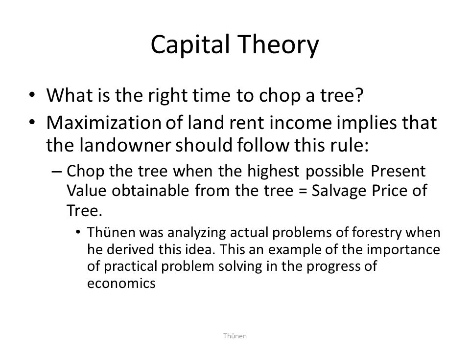 Capital Theory What is the right time to chop a tree