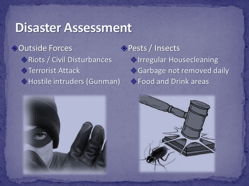 Disaster Assessment Outside Forces Pests / Insects