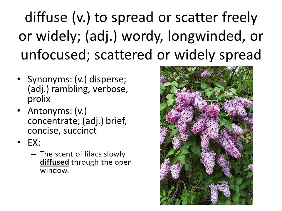 diffuse (v. ) to spread or scatter freely or widely; (adj