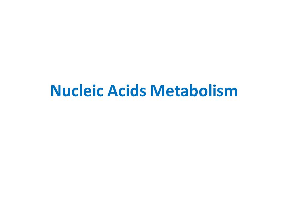 Nucleic Acids Metabolism