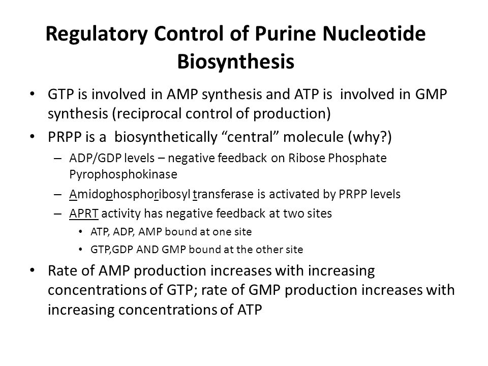 Regulatory Control of Purine Nucleotide Biosynthesis