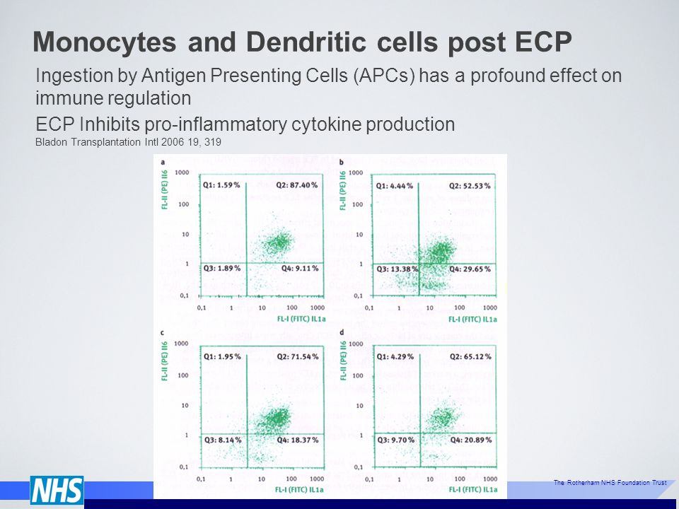 Monocytes and Dendritic cells post ECP