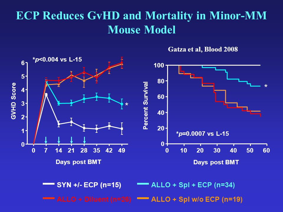 ECP Reduces GvHD and Mortality in Minor-MM Mouse Model