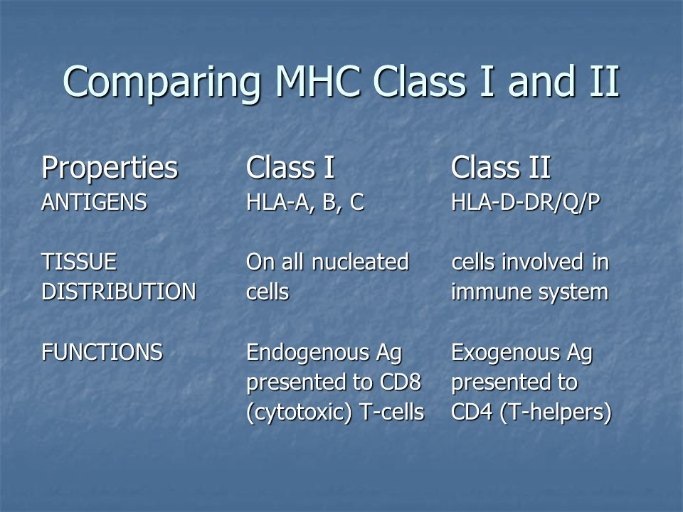 Comparing MHC Class I and II