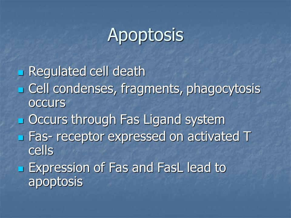 Apoptosis Regulated cell death