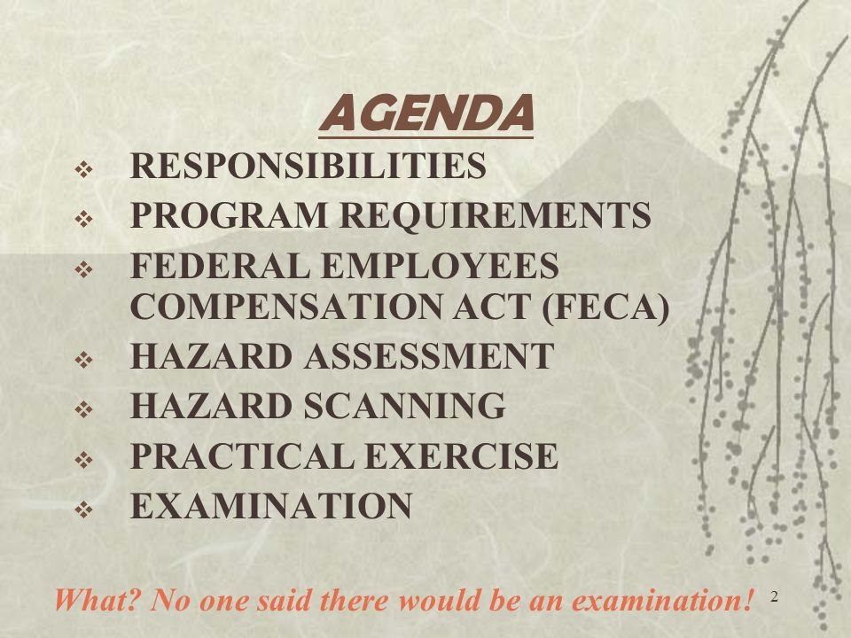 AGENDA RESPONSIBILITIES PROGRAM REQUIREMENTS