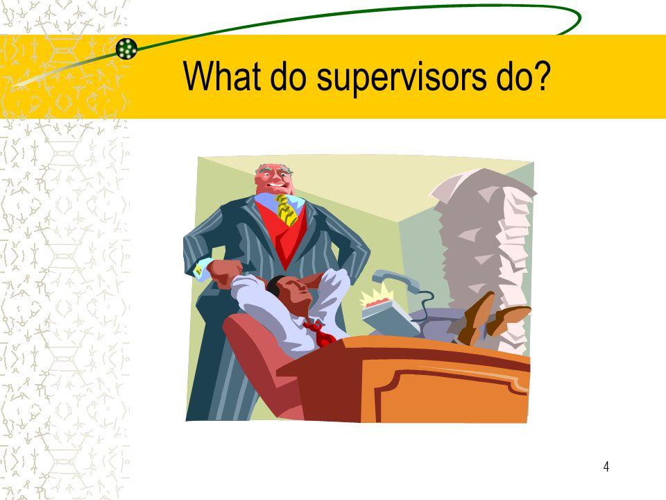 What do supervisors do