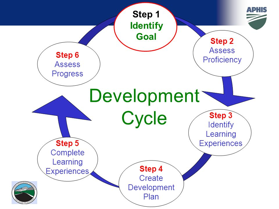 DevelopmentCycle Step 1 Identify Goal Step 2 Assess Proficiency