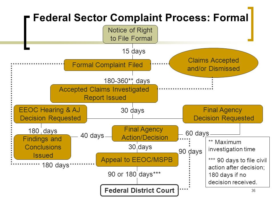Federal Sector Complaint Process: Formal