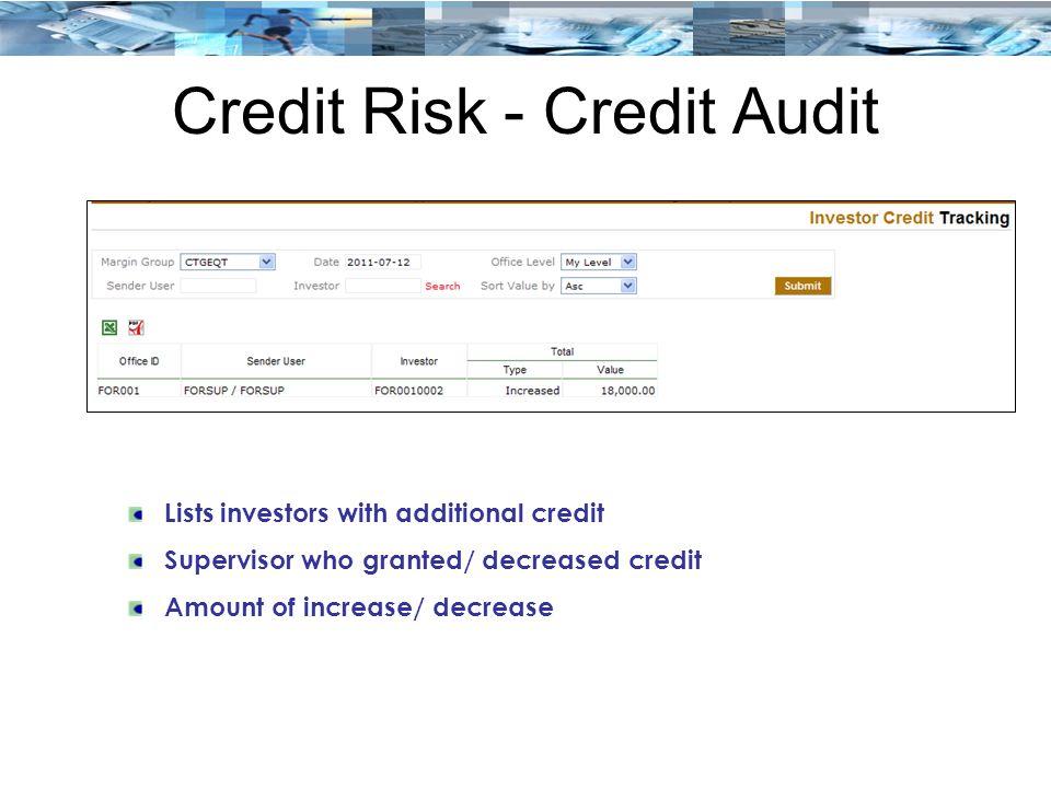 Credit Risk - Credit Audit