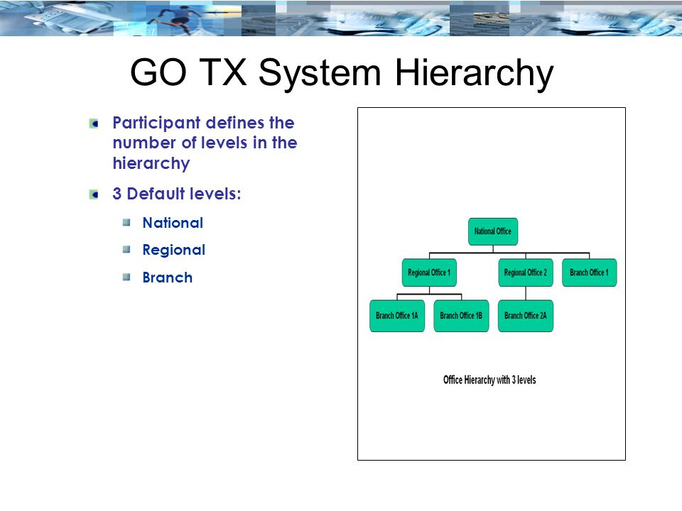 GO TX System Hierarchy Participant defines the number of levels in the hierarchy. 3 Default levels: