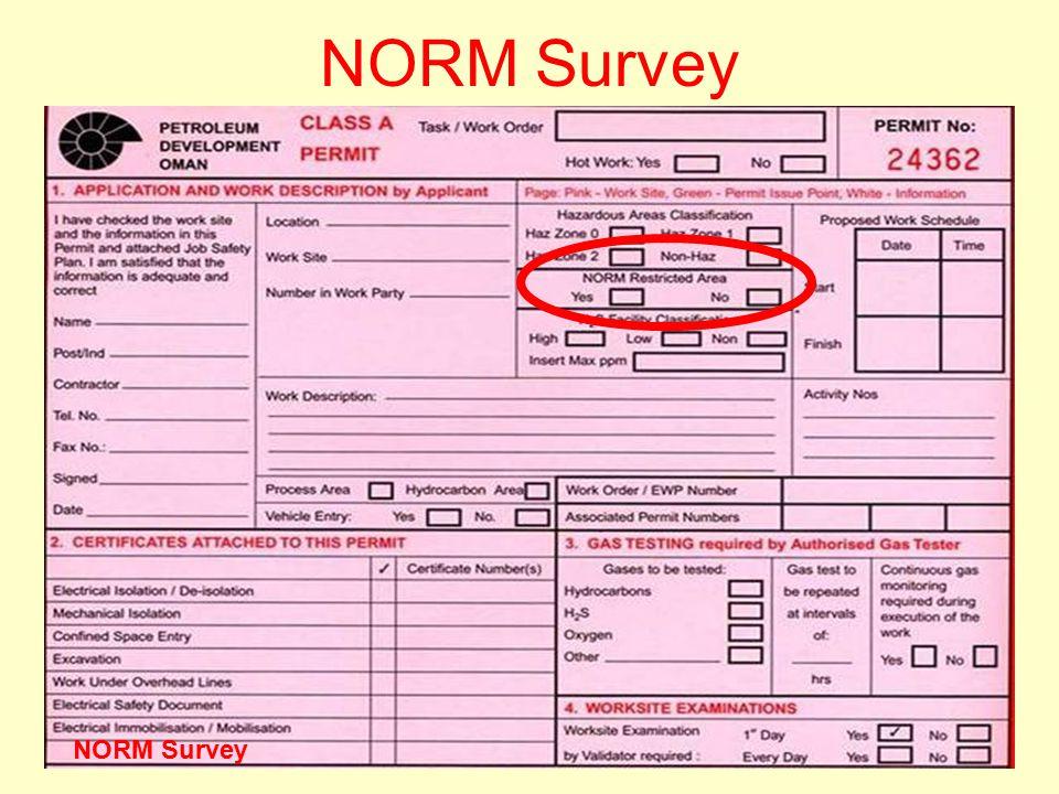 NORM Survey NORM Survey Version One 2006