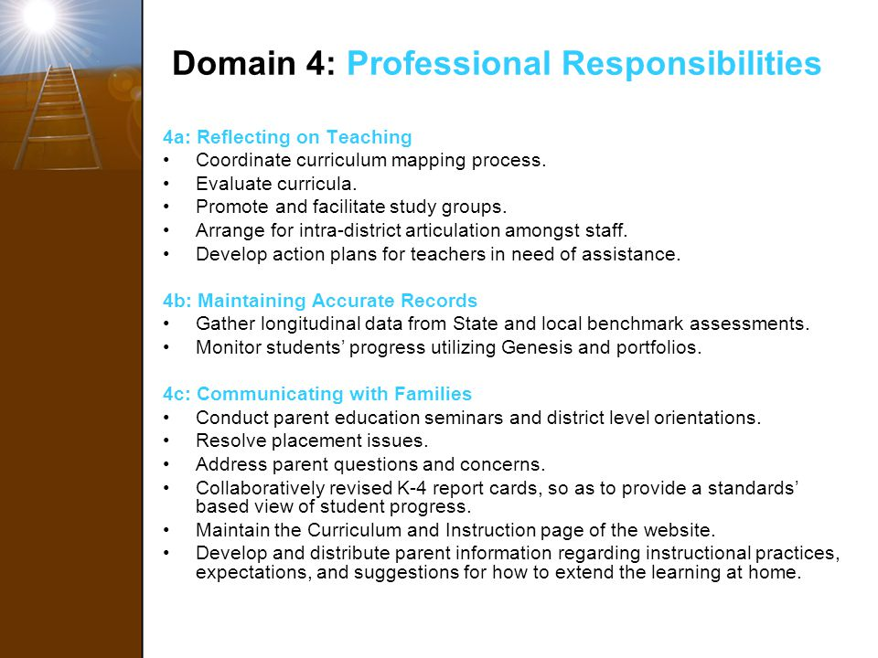 Domain 4: Professional Responsibilities
