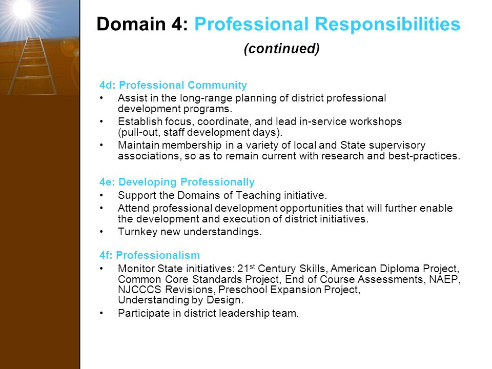 Domain 4: Professional Responsibilities (continued)