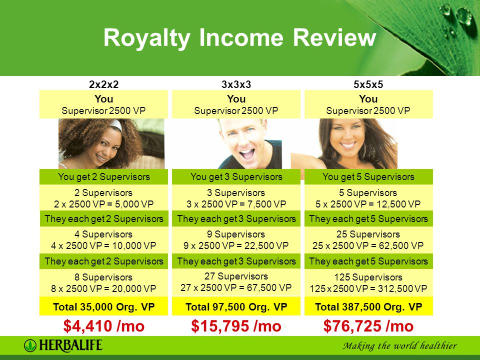Royalty Income Review $4,410 /mo $15,795 /mo $76,725 /mo 2x2x2 3x3x3