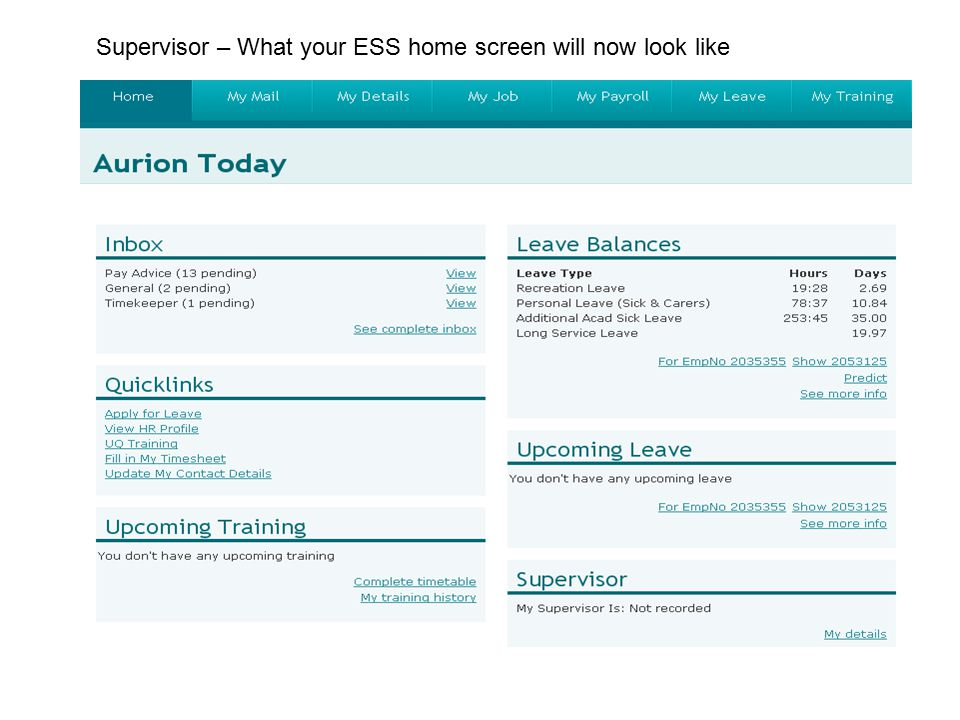 Supervisor – What your ESS home screen will now look like