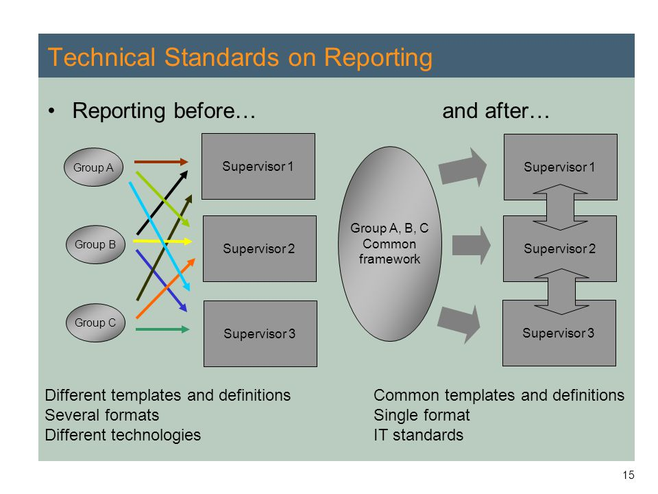 Technical Standards on Reporting