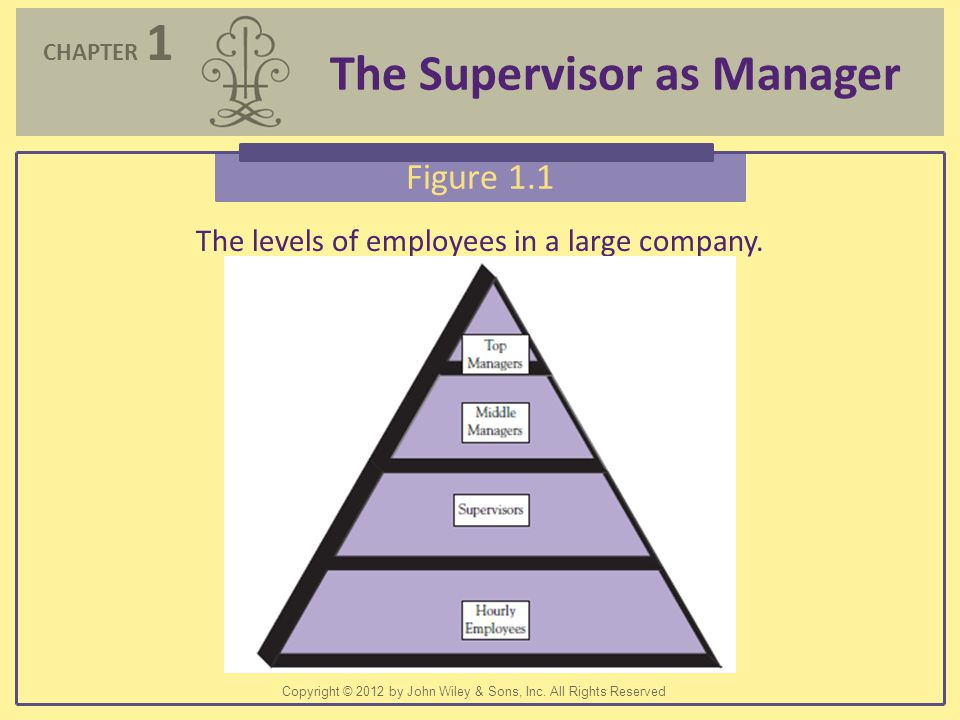 The levels of employees in a large company.