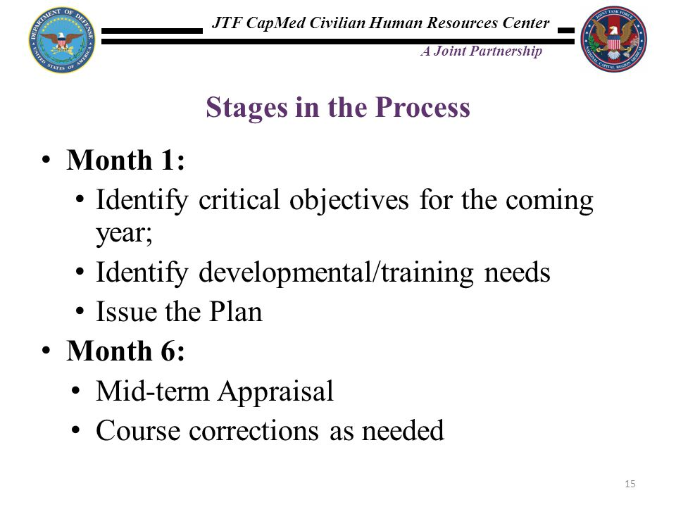 Stages in the Process Month 1: Identify critical objectives for the coming year; Identify developmental/training needs.