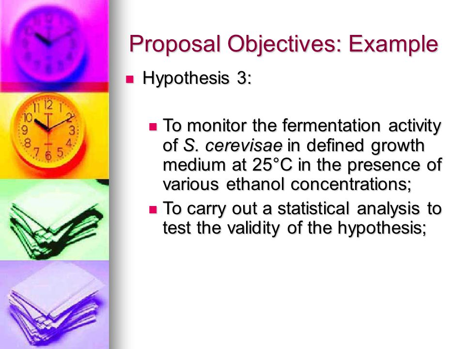 Proposal Objectives: Example