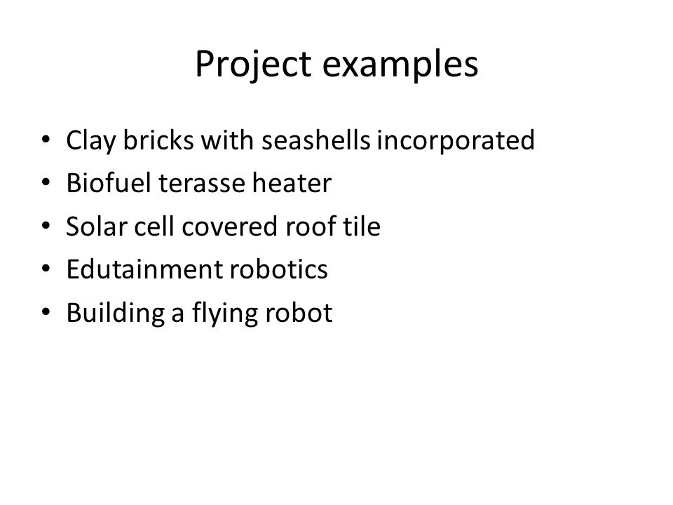 Project examples Clay bricks with seashells incorporated
