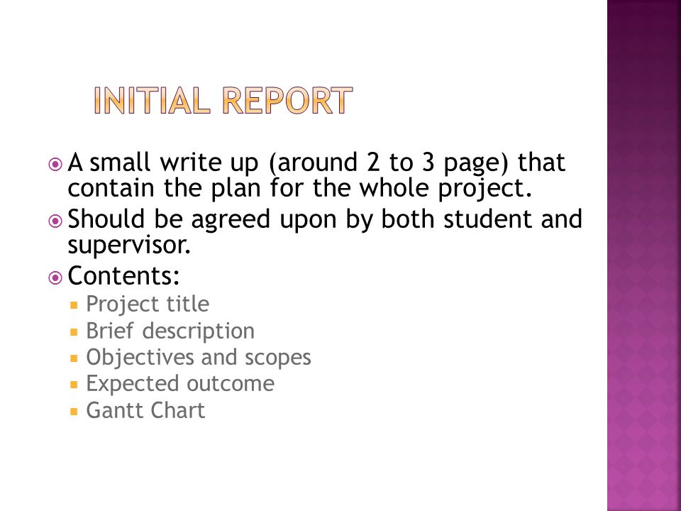 INITIAL REPORT A small write up (around 2 to 3 page) that contain the plan for the whole project.